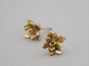 Succulent No. 3 Stud Earrings in Polished Brass