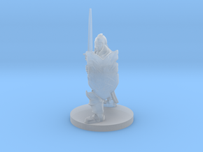 Helmed Paladin  in Smooth Fine Detail Plastic