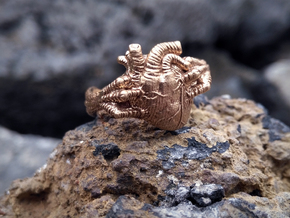 Dragon Power Ring in Natural Bronze: 10 / 61.5