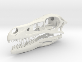 1:2 Velociraptor mongoliensis Skull and Jaw in White Natural Versatile Plastic