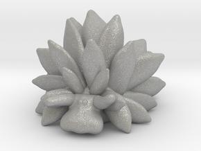 Costasiella Kuroshimae_Leaf Sheep  in Aluminum: Small