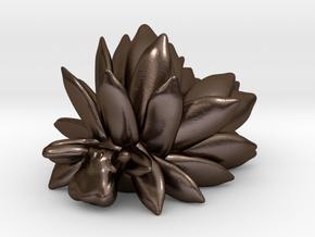 Costasiella Kuroshimae_yellow in Polished Bronze Steel: Small