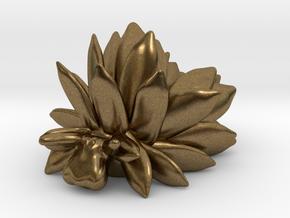 Costasiella Kuroshimae_yellow in Natural Bronze: Small