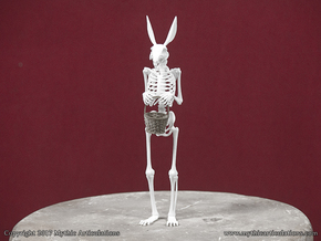 Easter Bunny Skeleton in White Natural Versatile Plastic