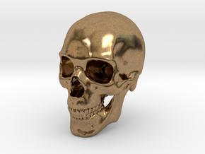 Human Skull 1:6 in Natural Brass