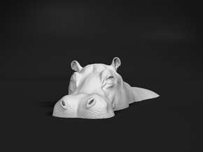 Hippopotamus 1:22 Lying in Water 1 in White Natural Versatile Plastic