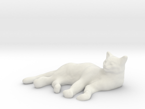 1/24 Sleeping Cat in White Natural Versatile Plastic