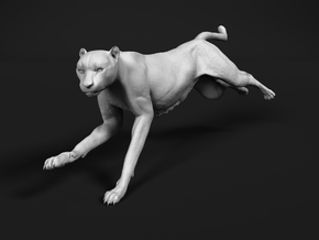 Cheetah 1:35 Running Female in White Natural Versatile Plastic