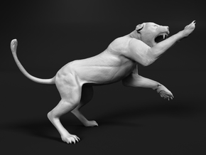 Lion 1:48 Striking Lioness in White Natural Versatile Plastic