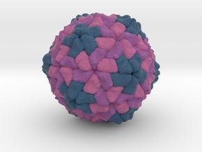 Sesbania Mosaic Virus in Full Color Sandstone