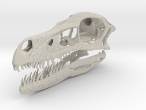 1:1 Velociraptor mongoliensis Skull and Jaw in Natural Sandstone