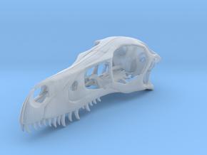 1:1 Velociraptor mongoliensis Skull in Smooth Fine Detail Plastic