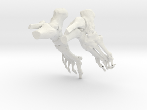 Bruce Ankle CT scan model in White Natural Versatile Plastic