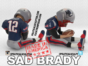 Deflategate new Sad Brady Small in Full Color Sandstone