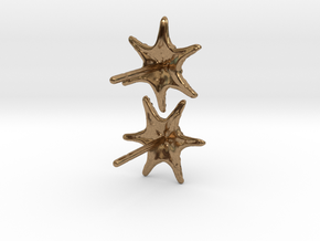 Sea Star Earrings in Natural Brass