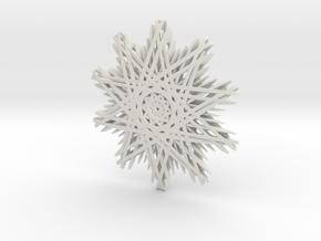 Winter in White Natural Versatile Plastic