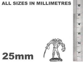 Mech Warrior1 25mm high in Smooth Fine Detail Plastic