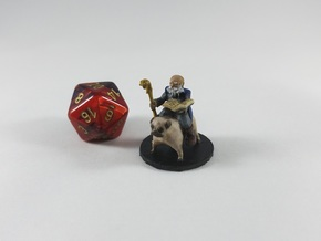 Gnome Wizard on a Pug Mount!  in Smooth Fine Detail Plastic