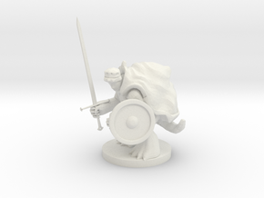 Tortle Fighter in White Natural Versatile Plastic