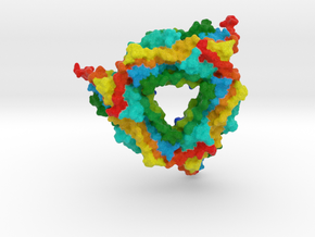 Small Heat Shock Protein in Full Color Sandstone
