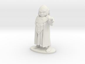 Dungeon Master Miniature in White Natural Versatile Plastic: 1:55
