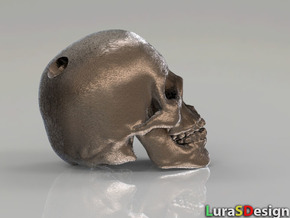 Human Skull - medium in Polished Bronzed Silver Steel