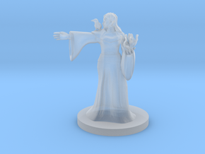 Elven Mage with Raven  in Smooth Fine Detail Plastic