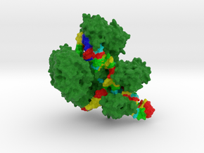 CRISPR-Cas9 in Full Color Sandstone