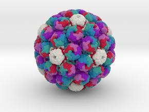 Murine Polyomavirus in Full Color Sandstone