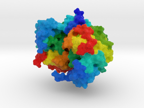 Nucletotide Transferase in Full Color Sandstone