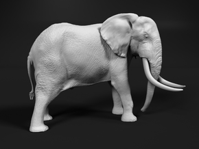 African Bush Elephant 1:87 Tusker Bull Dzombo in Smooth Fine Detail Plastic