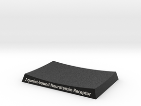 Neurotension Receptor Base  in Full Color Sandstone: Medium