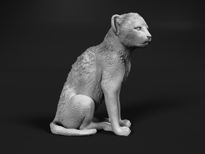 Cheetah 1:9 Sitting Cub in White Natural Versatile Plastic