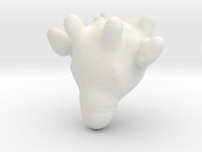 Untitled 2 in White Natural Versatile Plastic