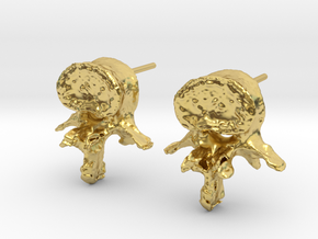 Garden Gnome's L-3 Lumbar Vertebra Earstuds in Polished Brass