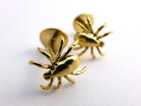 Tick Cufflinks - Nature Jewelry in Polished Brass