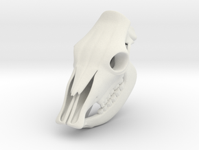 Cow Skull 3D Printed Model in White Natural Versatile Plastic