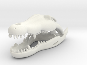 Crocodile skull in White Natural Versatile Plastic