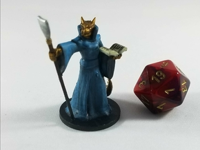 Dragonborn Abjuration Wizard in Smooth Fine Detail Plastic