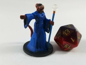 Tiefling Female Conjurer Wizard in Smooth Fine Detail Plastic