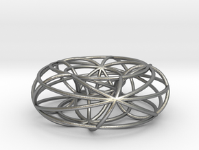 toroidal geodesics big in Natural Silver