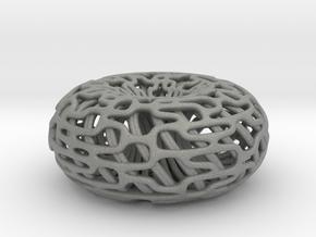 Torus Inside A torus in Gray Professional Plastic