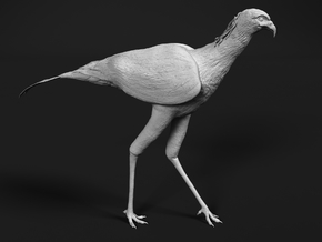 Secretarybird 1:87 Walking in Smooth Fine Detail Plastic