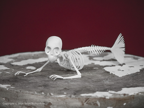 Feejee Mermaid Skeleton in White Natural Versatile Plastic