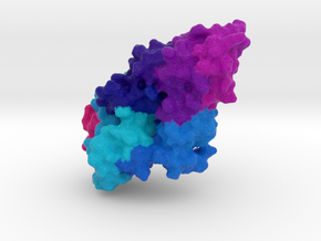 DNA Flap Endonuclease in Natural Full Color Sandstone