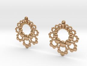 D Apo. Earrings in Polished Bronze