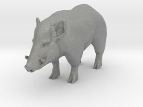 S Scale Wild Boar in Gray PA12