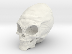 Alien Skull in White Natural Versatile Plastic