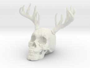 Antler Skull in White Natural Versatile Plastic
