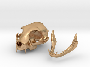 Mini Cat Skull Sculpture in Natural Bronze